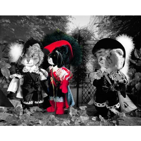 Musketier rot/schwarz von Kösen