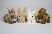 Uni Toys , 28012A, Hase, kaninchen, Rabbit, Conejito, coniglio, Lapin,  Puppenstube im Nikolaiviertel