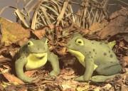 """Frosch """"Heinrich"""""""