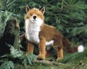 """Fuchs """"Felix"""" 3790"""