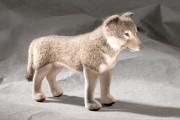 Wolf von Kösen Bild 1