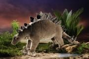 Stegosaurus-ko-7010