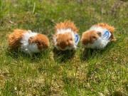 Meerschweinchen, Uni Toys, F90132A, Unitoys, Meersau, Гвинейская свинья, Conejillo, Cavia, Plüschtier,