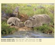 Nilpferd, liegend, klein, Firma Kösen, 7510,  Hippo, Lying, smal, Hippo Couche', Petit, 30 cm
