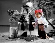 Piratte Steuermann von Kösen