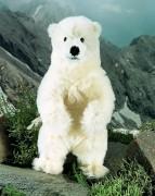 """Eisbär """"Hudson"""" von Kösen"""