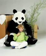 Panda von Kösen
