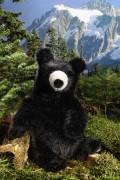 kleiner Schwarzbär ko 7060