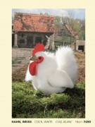 Hahn weiß, Fa. Kösen , 7490 , 16 cm Cock, white, COQ, blanc, Plüschtier,