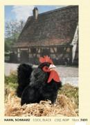 Hahn schwarz, Fa. Kösen , 7491 , 16 cm Cock, black, COQ, Noir, Plüschtier,
