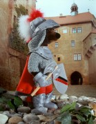 Ritter von Kösen